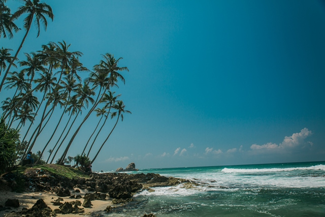 Intrepid Travel-sri-lanka_beach_palm-trees_small-KPRN
