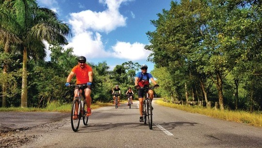 Intrepid Travel CUBA Cycling_cyclists_group_palm_trees